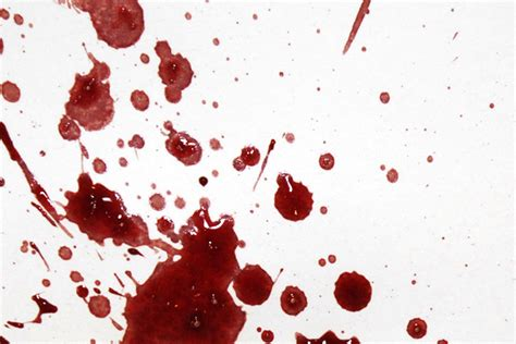 bloodstain pattern analysis notes image gallery low velocity blood spatter