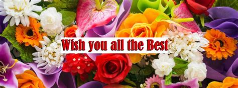best wishes to you the one sms to say best wishes best wishes sms sms to say