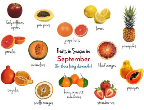 vegetables and fruits in season top 5 healthy habits to learn from the swiss the