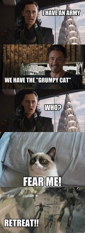 Funny Memes Pinterest - top 30 funny cat memes quotes words sayings