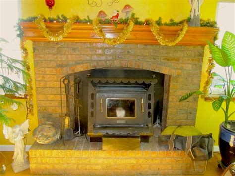 earth stove fireplace insert wood stove green living made simple