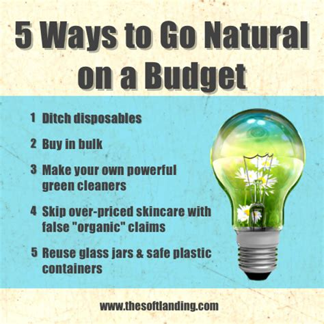 5 ways to go green at home free cleaning checklist printable 5 ways to go natural on a budget the soft landing 174