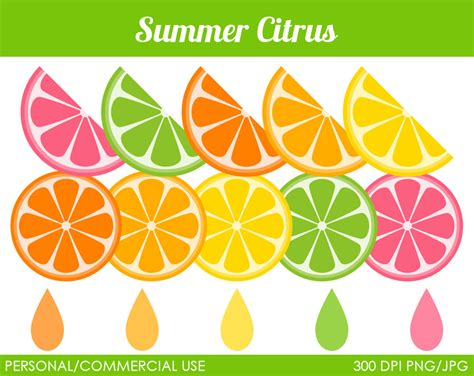 clip art citrus clip art cliparts