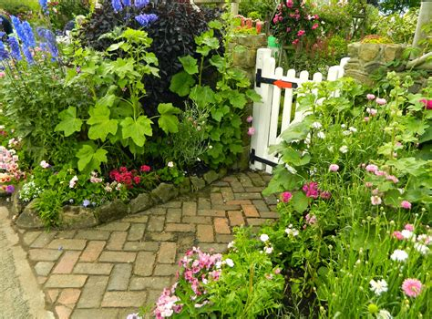 how to design a cottage garden pam s cottage garden grafton cottage an iconic