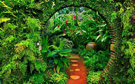 garden pictures for backgrounds wallpaper cave garden wallpapers wallpaper cave
