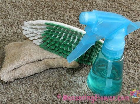 how to clean vomit off couch carpets cleanses and eos on pinterest