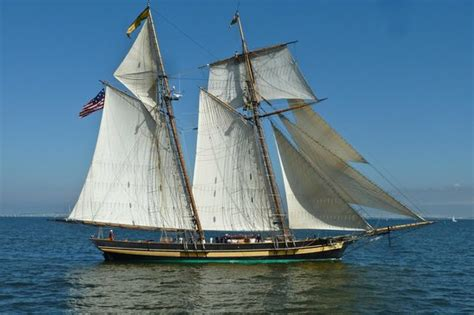 chesapeake bay boat tours navy academy sailboats seen from the cruise picture of