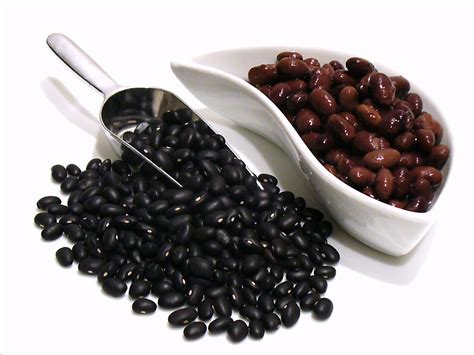 Updated Bathroom Ideas The History Of Black Beans