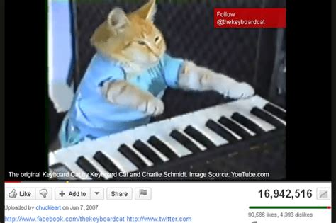 Keyboard Cat Meme - keyboard cat meme
