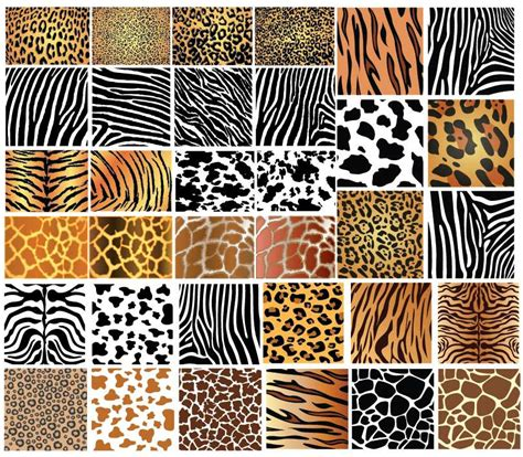 pattern photoshop skin animal skin patterns digital graphics and printables