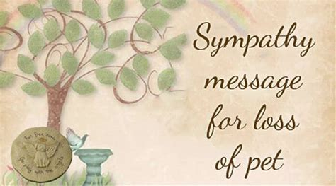 comfort pet law condolence messages for loss of son sympathy message