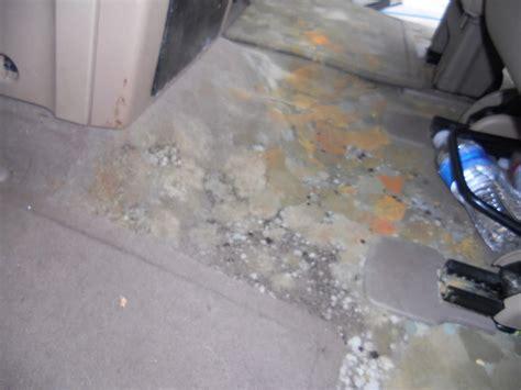 car upholstery repair richmond va auto water damage mold mildew odor removal richmond va