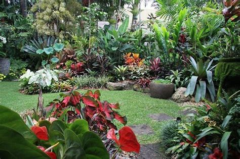 Tropical Backyard Landscaping Ideas Backyard Design 2017 2018 Best Cars Reviews
