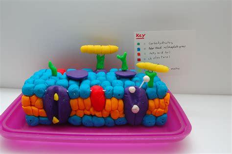 related cell membrane cell membrane cell membrane