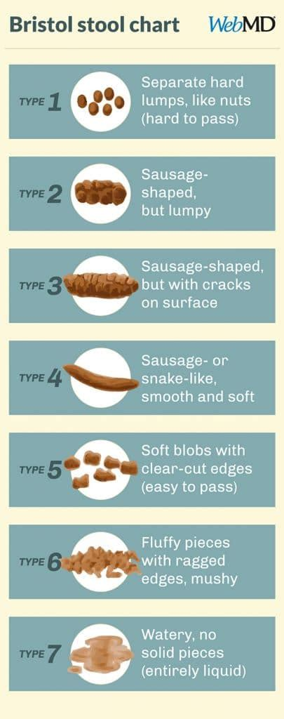 Color Stool Chart by Learn How Constipation Causes Hormonal Imbalances And Find