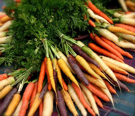 Harga Bibit Wortel jual benih bibit wortel pelangi mix mix rainbow carrot