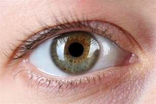 color part of eye eye freckles spots on iris linked to sun exposure