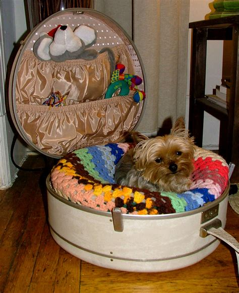 beds for yorkies yorkie beds korrectkritterscom