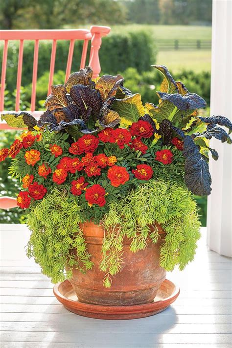 fall containers anyone can recreate fall containers