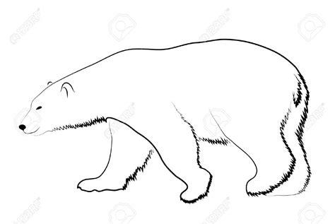 polar bear tattoo designs outline drawing of a polar amazing outline polar