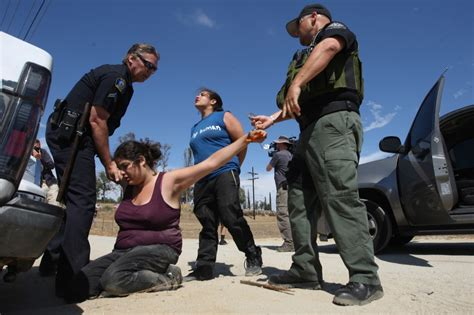 undocumented how immigration became illegal books california bears the costs of illegal immigration san