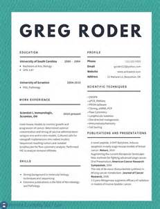 how to make a best professional resume 5