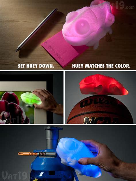 do all chameleons change colors color changing chameleon l matches color of whatever