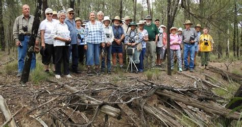 Forest Mba Closing by Toowoomba Field Naturalists Report On 2017 Post Easter