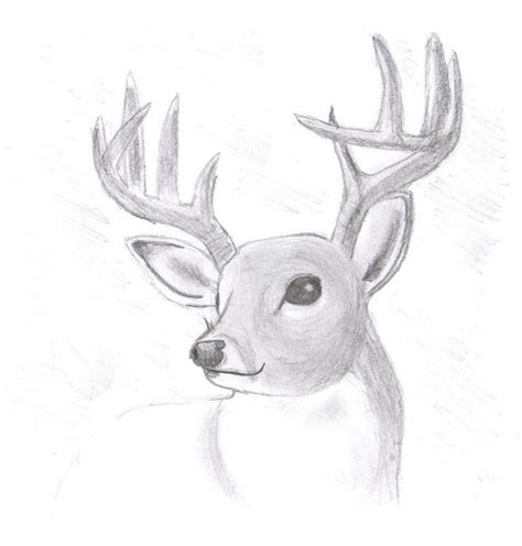 How To Draw Realistically For Beginners