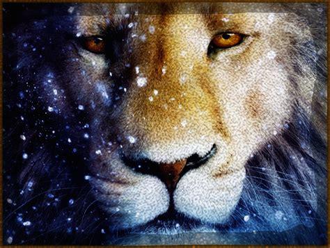 imagenes de leones en movimiento ver imagenes de fondo de pantalla sobre leones imagenes