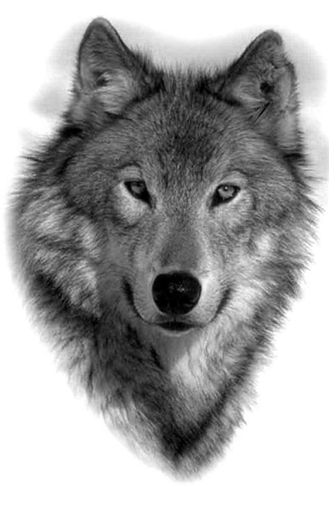 adorable realistic wolf portrait tattoo design
