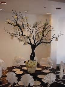tree branch decor style trend manzanita branches wishing trees the 530