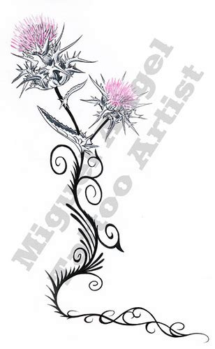 tattoo gallery scottish thistle tattoos