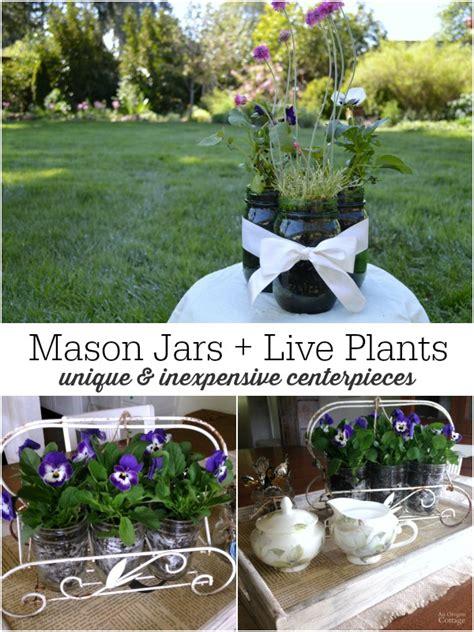 easy mason jar flower arrangements   plants