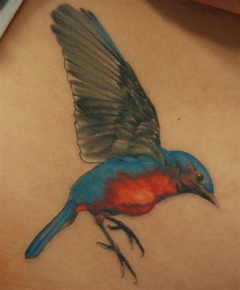 bluebird 171 sole tattoo