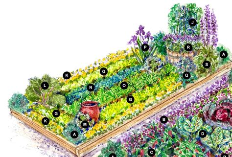 bhg vegetable garden plans garden design ideas