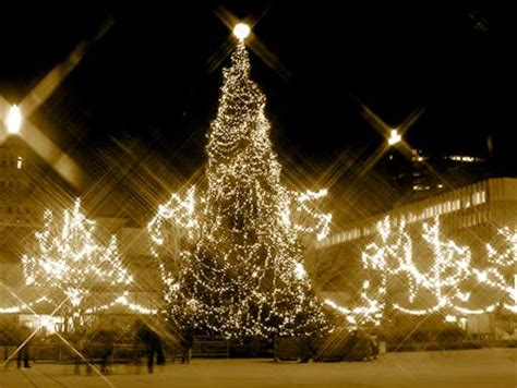 christianity and the christmas tree religion ethics in pictures traditions