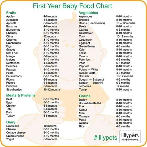 when can babies eat table food 17 best images about baby food chart on pinterest baby