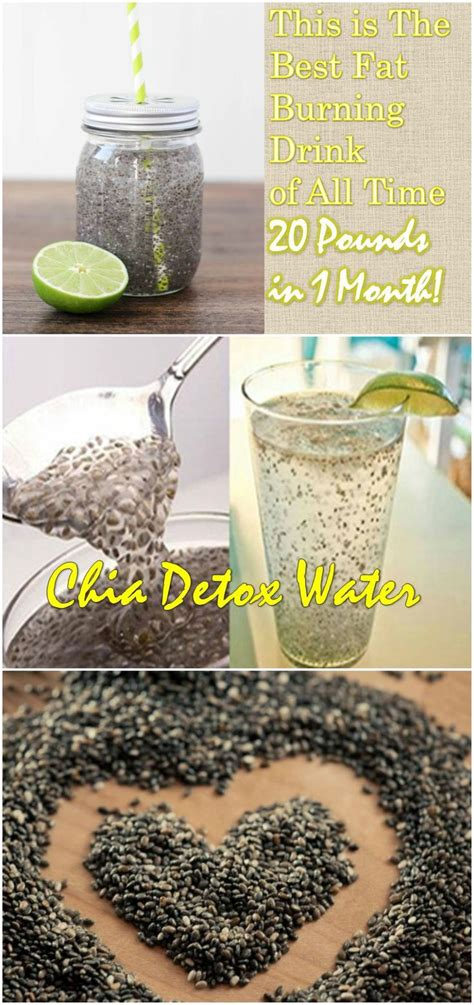 Chia Detox Water Benefits by Best 25 Chia Seeds In Water Ideas On Honey