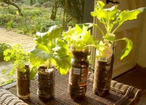 plastic containers for gardening great ideas for container gardening willem container
