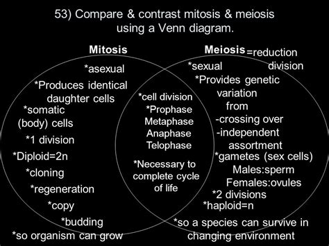 meiosis mitosis venn diagram biology eoc review pack ppt
