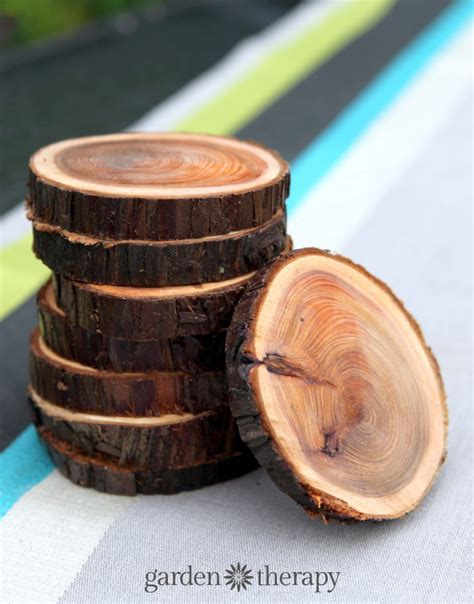 trees made out of wood branch coasters