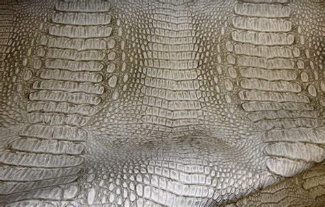 alligator upholstery 16 best images about alligator vinyl on pinterest