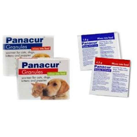 panacur for puppies panacur granules for cats dogs cat health care cat pet supermarket co uk