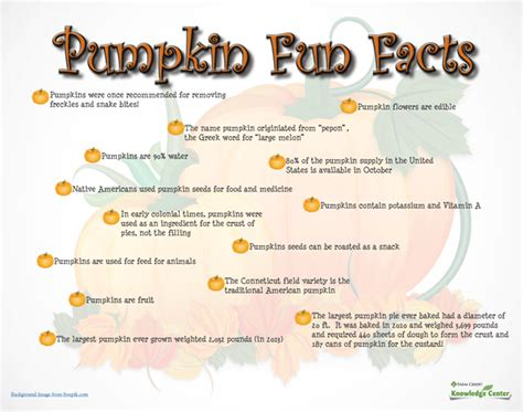 pumpkin facts farm credit knowledge center its fall ya ll pumpkin