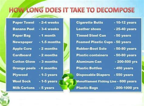 To Take A Year by How Does It Take To Decompose A Guide Plastic Bags