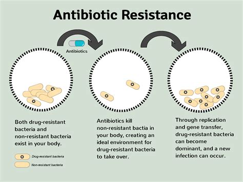 what are resistors and why are they important why is the antimicrobial stewardship program important