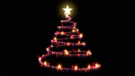 christmas tree on black background stock footage video
