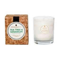 tea tree geranium 40hr pot candle new amphora aromatics