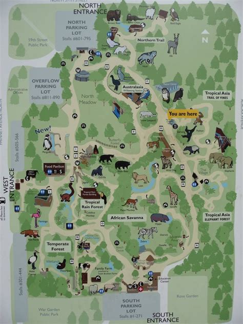 seattle zoo map woodland park zoo map seattle parks